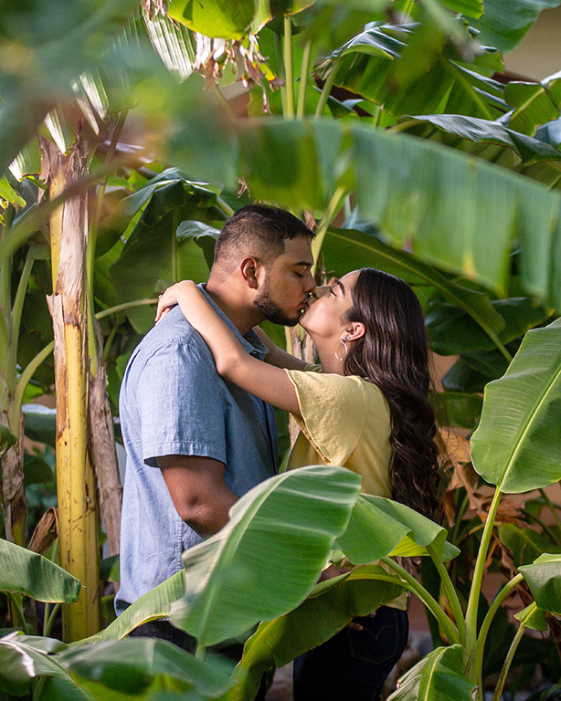 engaged couple kissing in palm trees